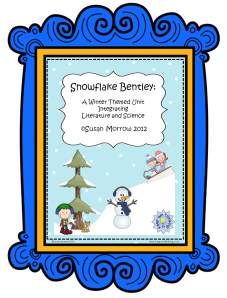 snowflake bentley framed